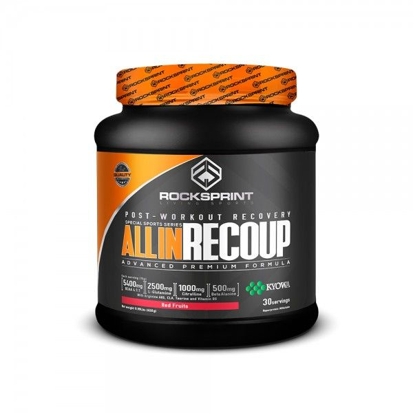 ALL IN RECOUP 450 g